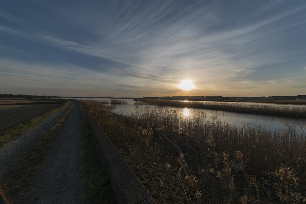 川と沼の境界 〜 ゴール